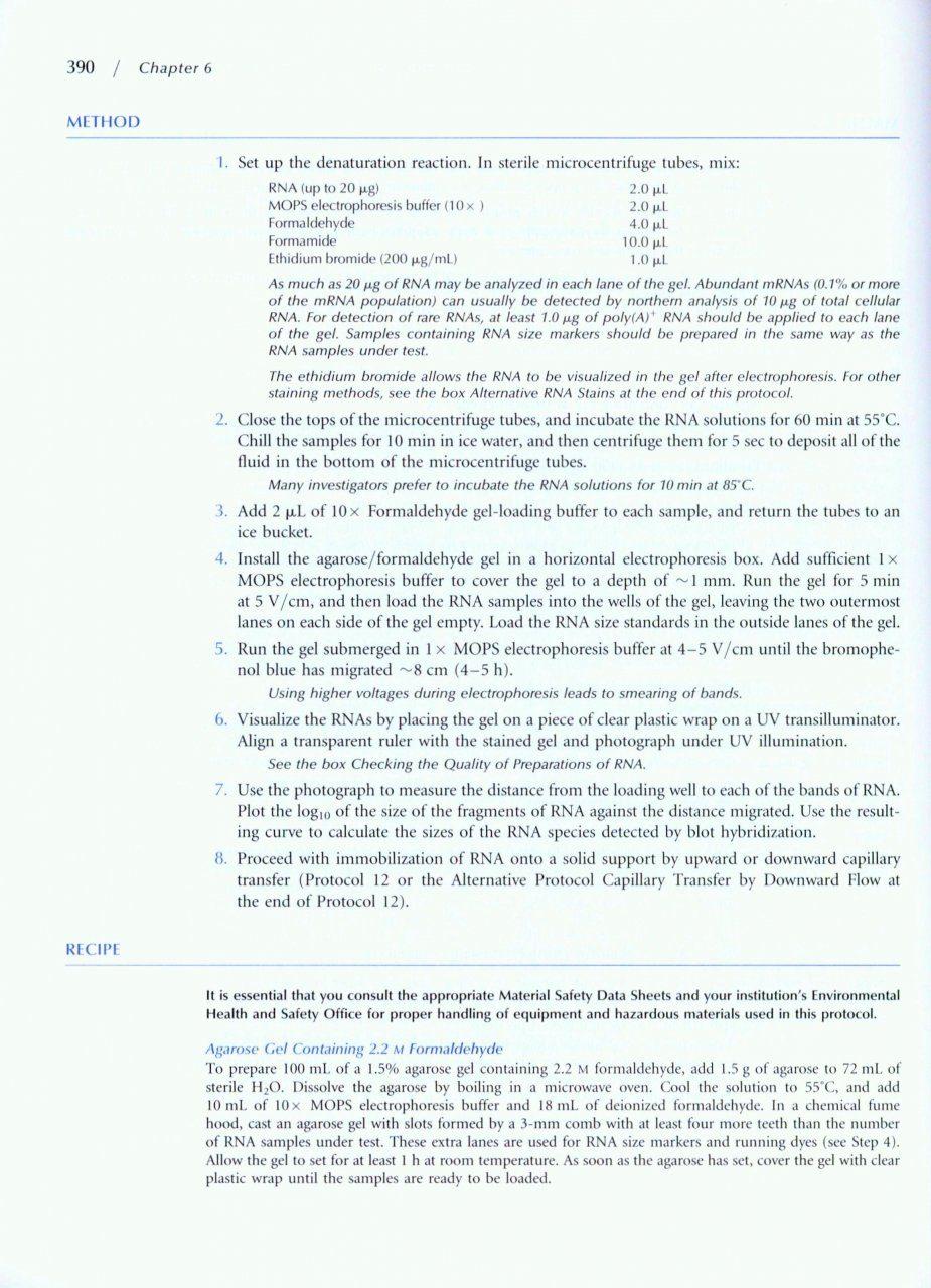 molecular cloning a laboratory manual 2001