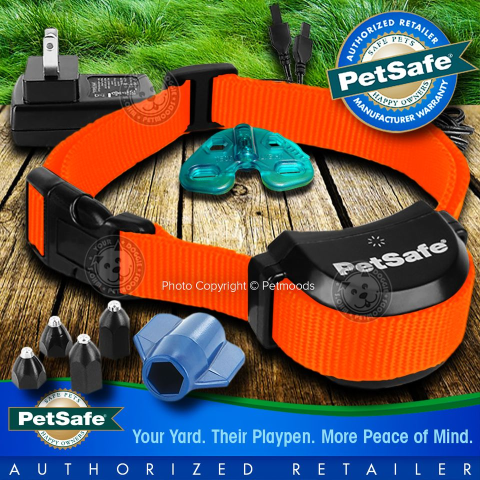 petsafe stay and play manual