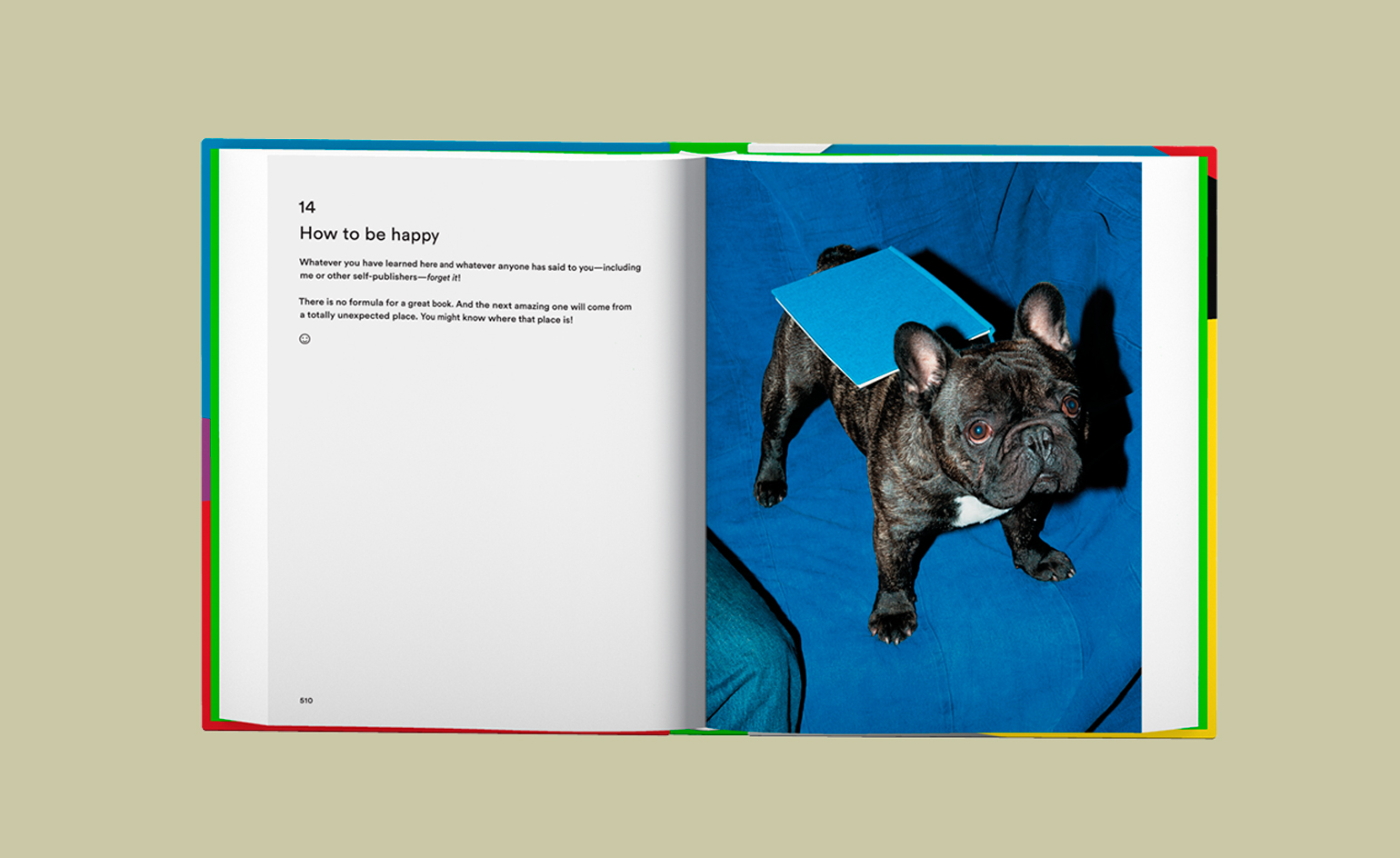 self publish be happy a diy photobook manual and manifesto